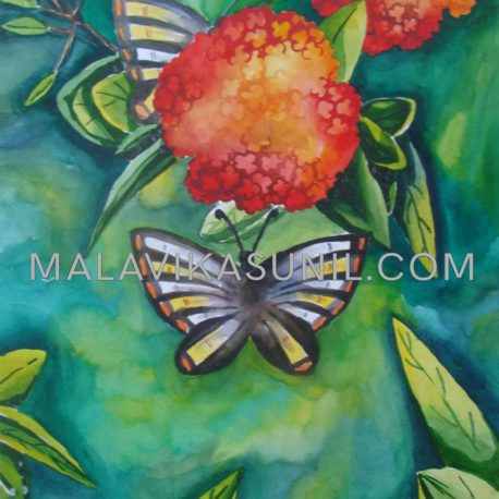 11-Butterfly-on-the-flower_Water-colour