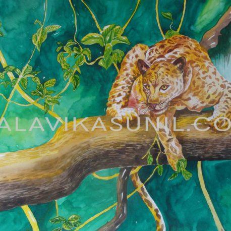 13-Leopard